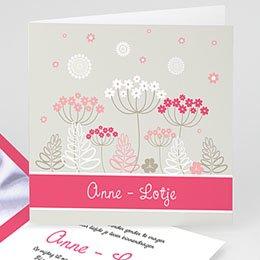 Aankondiging Geboorte Anne - Lotje geboortekaartje meisjes