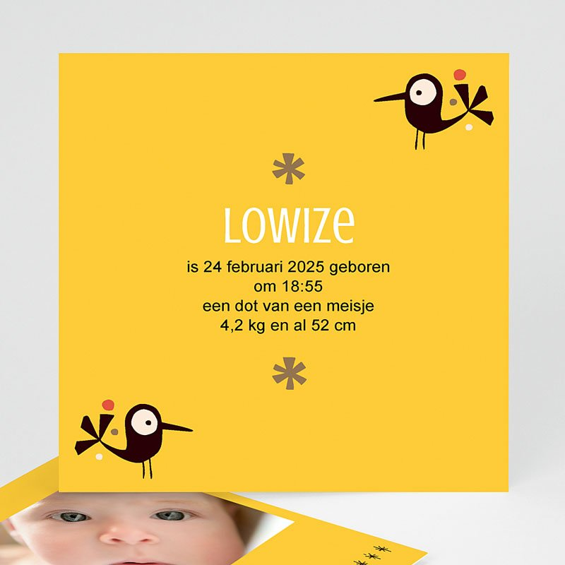 Geboortekaartje meisje - origineel geboortekaartje 14861 thumb