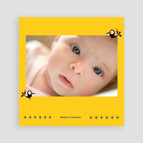 Geboortekaartje meisje - origineel geboortekaartje 14862 thumb