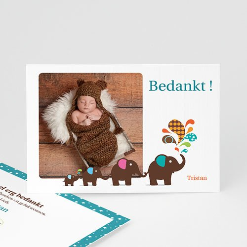 Bedankkaartje geboorte zoon Olifanten optocht