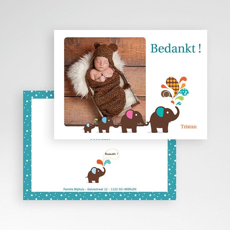 Bedankkaartje geboorte zoon Olifanten optocht pas cher