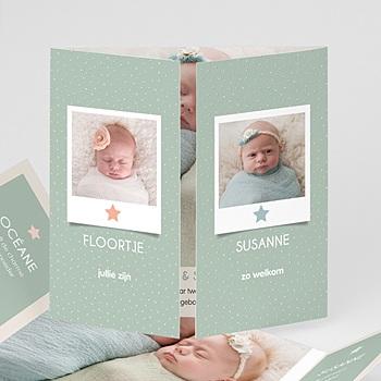 Geboortekaartjes tweelingen - In het veld - 3
