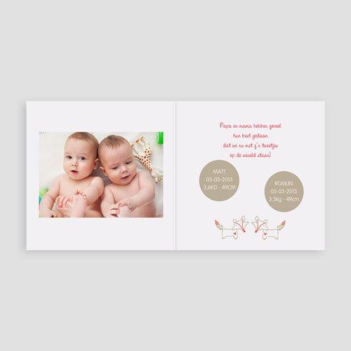 Geboortekaartje jongen - nieuw op aarde 16167 thumb
