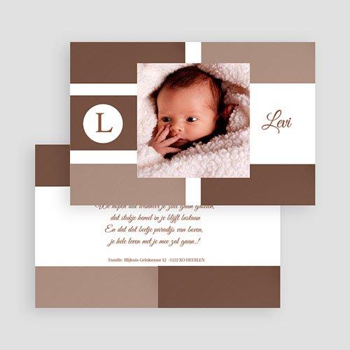 Geboortekaartje jongen Puur natuur gratuit