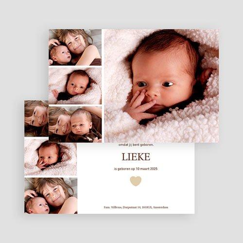 Geboortekaartjes Meisje Even voorstellen gratuit