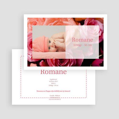 Geboortekaartje meisje - Rode rozen 17625 thumb