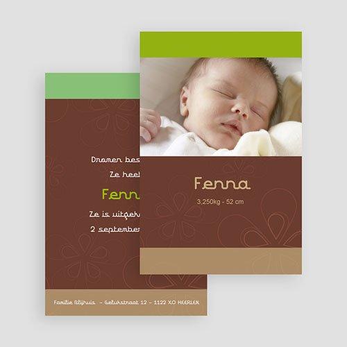 Geboortekaartje meisje - choco-pistache kaart 17751 thumb