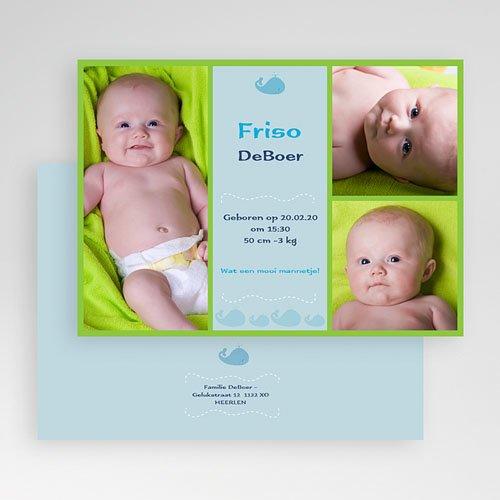 Geboortekaartjes Jongen Lente-oogst, blauw gratuit