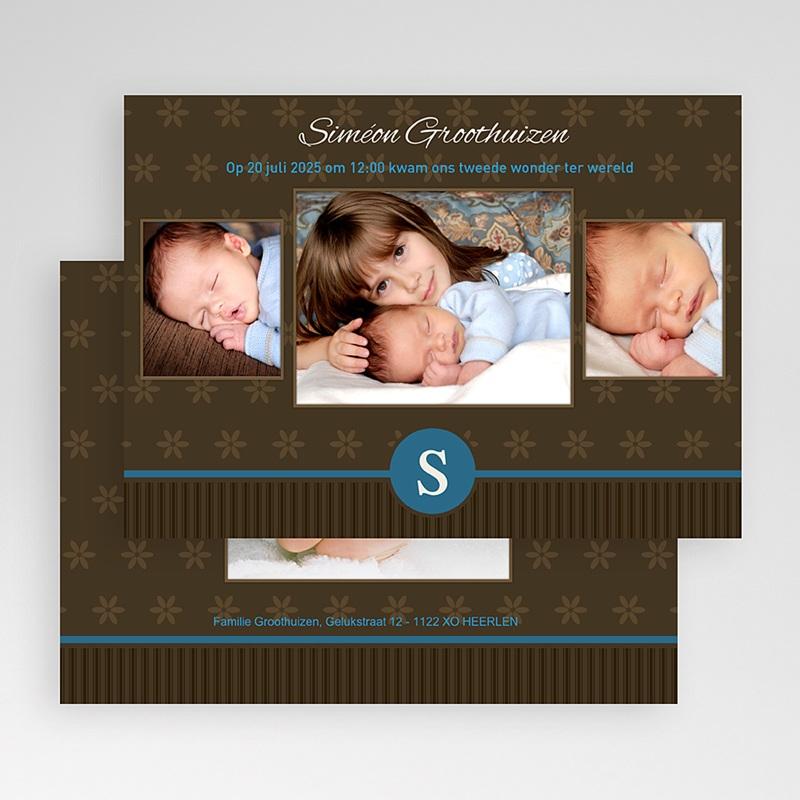 Geboortekaartje jongen Prinselijk geschenk gratuit