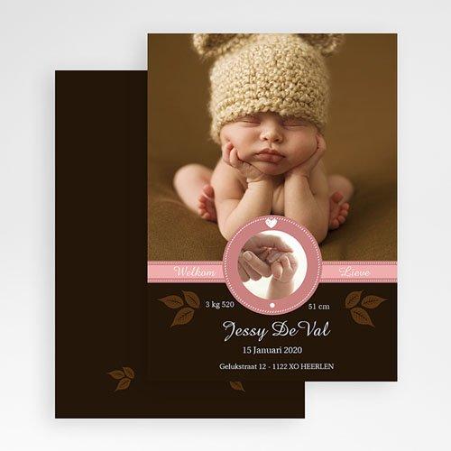 Geboortekaartje meisje - Hazelnootje 19289 thumb