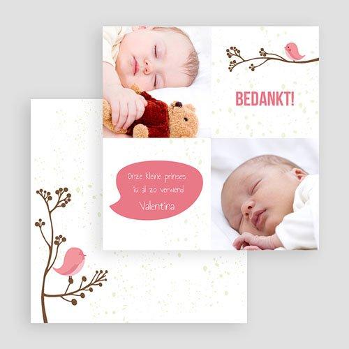Bedankkaartje geboorte dochter Vogeltje Meisje gratuit
