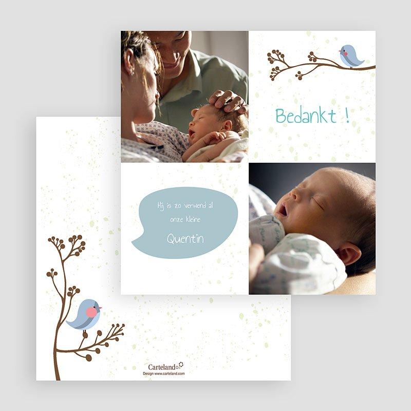 Bedankkaartje geboorte zoon - Fluitende vogel jongen 20097 thumb