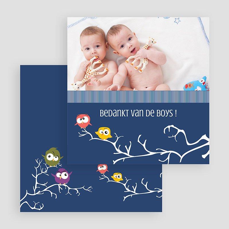 Bedankkaartjes Geboorte Tweeling In vogelvlucht gratuit
