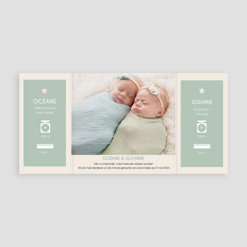 Geboortekaartjes tweelingen - In het veld 20523 thumb