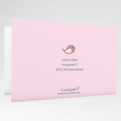 Doopkaartje meisje - Roze en vogels 22124 preview