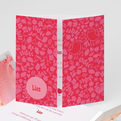 Geboortekaartje meisje - Roze en rood 22403 thumb