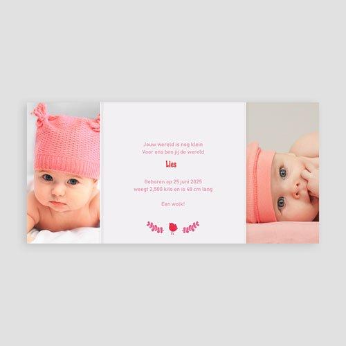 Geboortekaartje meisje - Roze en rood 22404 preview