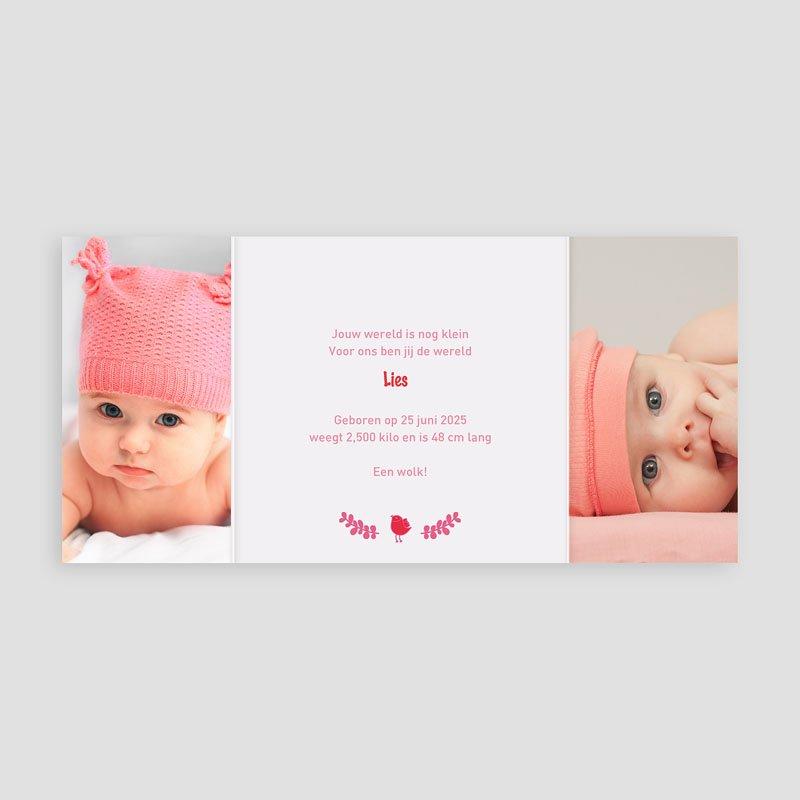 Geboortekaartje meisje - Roze en rood 22404 thumb