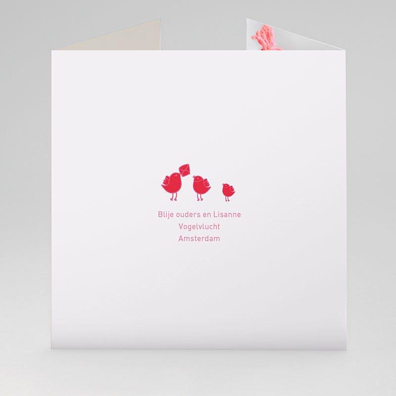Geboortekaartje meisje - Roze en rood 22405 thumb