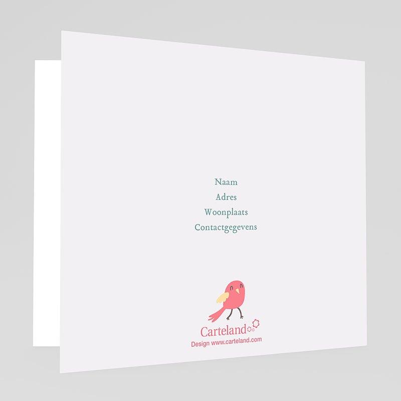 Geboortekaartje meisje - vroege vogels 22497 thumb