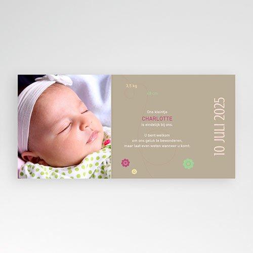 Geboortekaartje meisje Lieveheersbeestjes voor een baby pas cher