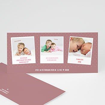 Geboortekaartje meisje - Hollandse nieuwe - 1