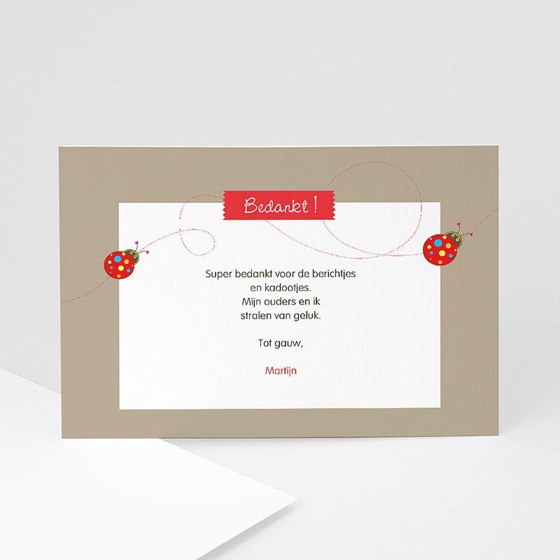 Bedankkaartje geboorte dochter   Lieveheersbeestjes voor een baby   Zokaartjes com