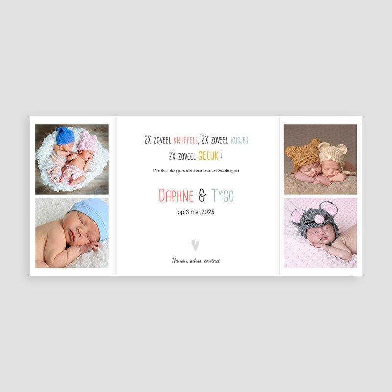 Geboortekaartjes tweelingen - Tweeluik tweelingen 24784 thumb