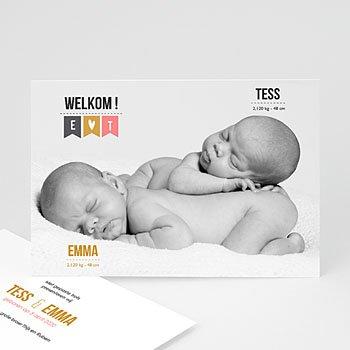 Geboortekaartjes tweelingen - Twin welkom - 1