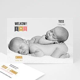 Aankondiging Geboorte Twin welkom