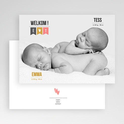Geboortekaartjes tweelingen - Twin welkom 24794 thumb