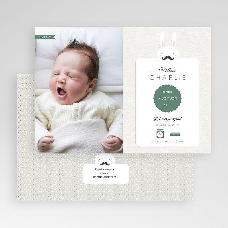 Geboortekaartje jongen Konijn Snor gratuit
