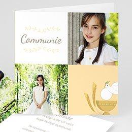 Bedankkaartjes Geïllustreerde communie