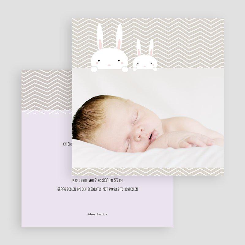 Geboortekaartje meisje - Knijntje 41638 thumb