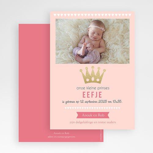 Geboortekaartjes met Foto Ons prinsesje gratuit