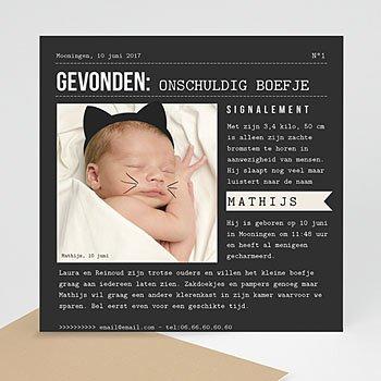 Geboortekaartje jongen - Chaton mignon - 0