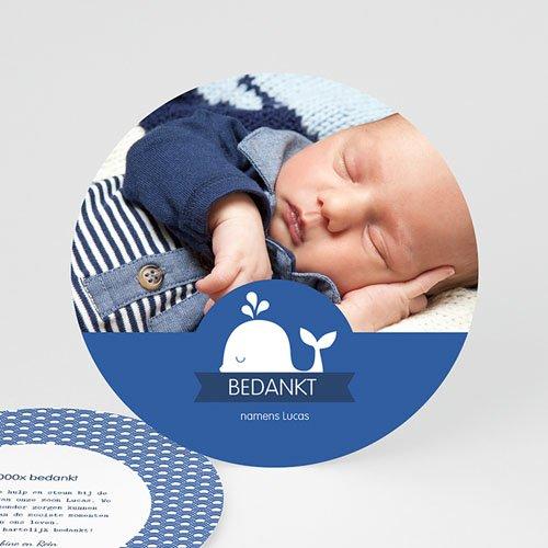 Bedankkaartje geboorte zoon - Walvisje 44561