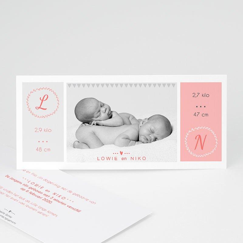 Geboortekaartjes tweelingen - poetisch 44695 thumb