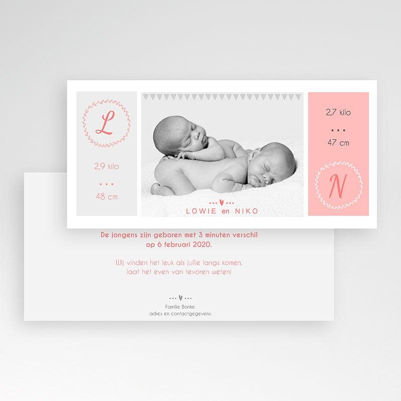 Geboortekaartjes tweelingen - poetisch 44696 thumb