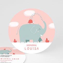 Aankondiging Doopviering Ronde roze olifant
