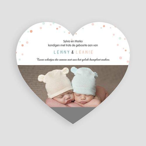 Geboortekaartjes tweelingen - kleine knijntjes 47183 thumb