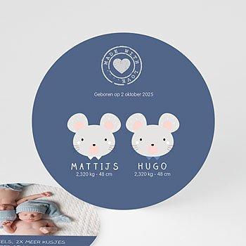 Geboortekaartjes tweelingen - Muisjes - 0