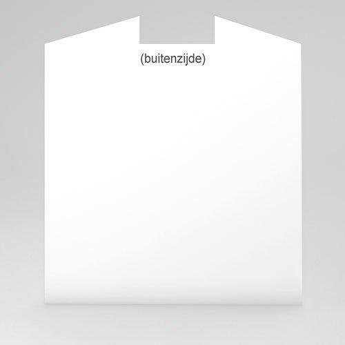 100% eigen ontwerp Geboortekaartjes - 15 cm x 14.5 cm 47461 preview