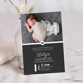 Geboortekaartje meisje - wanddeco - 0