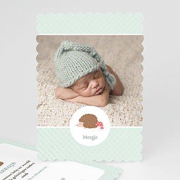 Geboortekaartje jongen - Egel - 0