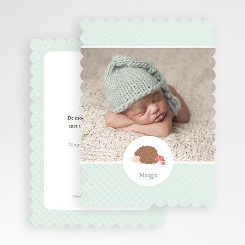 Geboortekaartje jongen - Egel 48646 thumb