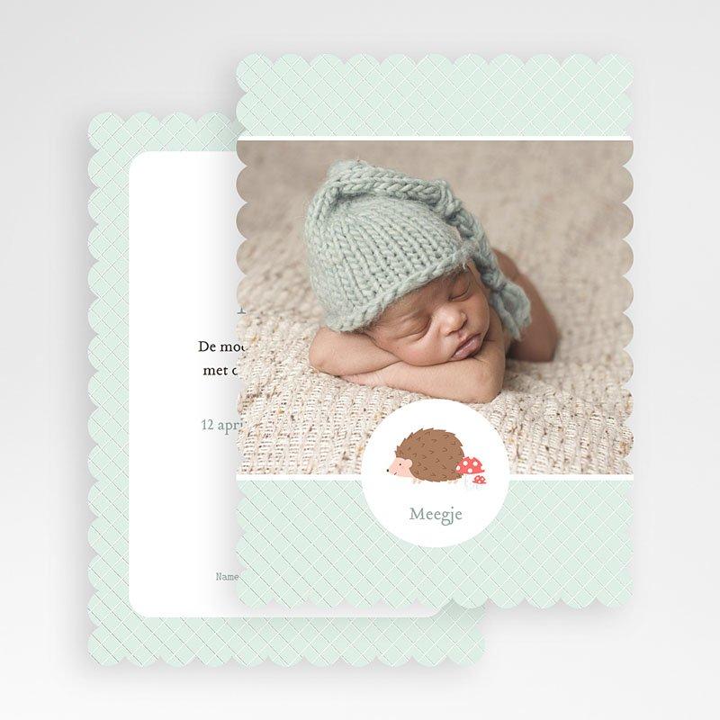 Geboortekaartjes Jongen Egel gratuit