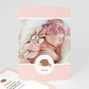 Geboortekaartjes met beesten - Egeltje - 0