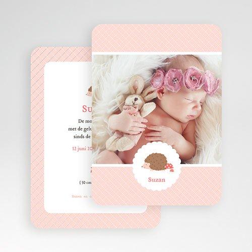 Geboortekaartjes Dieren - Egeltje 48655 thumb