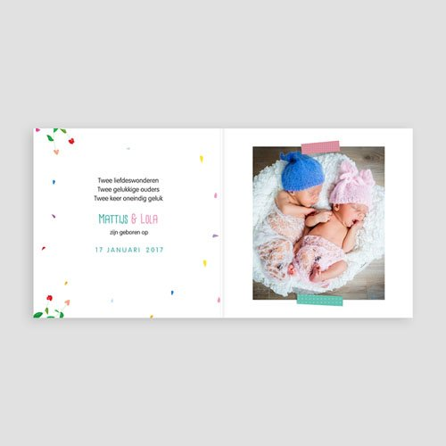 Geboortekaartjes tweelingen - Eekhoorntjes 49344 thumb